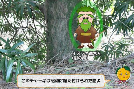 201211_009.jpg
