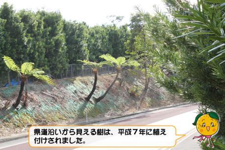201211_012.jpg